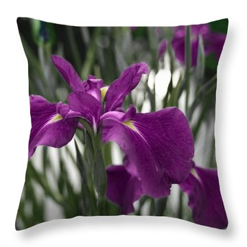 Throw Pillow featuring the photograph Iris On Pond's Edge by Penny Lisowski