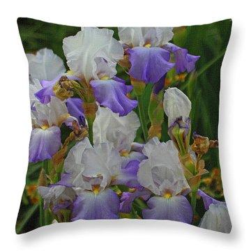 Iris Patch At The Arboretum Throw Pillow