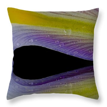 Iris Petal Reflected Throw Pillow by Don Schwartz