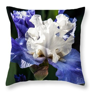 Throw Pillow featuring the photograph Stairway To Heaven Iris by Roselynne Broussard
