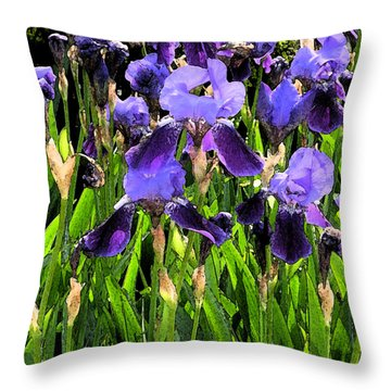 Iris Tectorum Throw Pillow by Yue Wang
