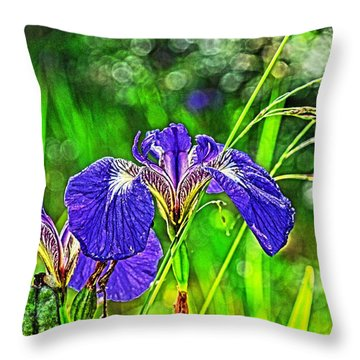 Throw Pillow featuring the photograph Irises by Cathy Mahnke