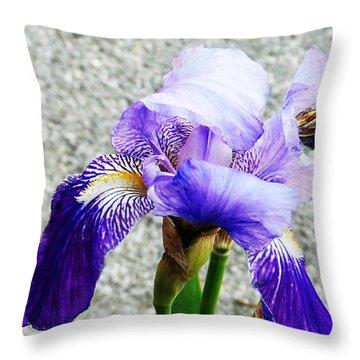 Irises Throw Pillow by Jasna Dragun