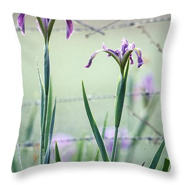 Irises2 Throw Pillow