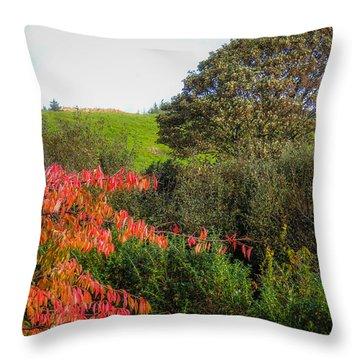 Irish Autumn Countryside Throw Pillow