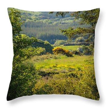 Irish Countryside In Spring Throw Pillow