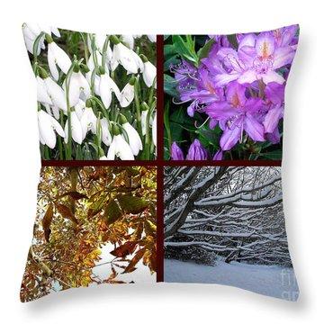 Irish Seasons Throw Pillow by Patrick J Murphy