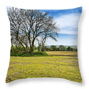 Throw Pillow featuring the photograph Irish Springtime by Jane McIlroy