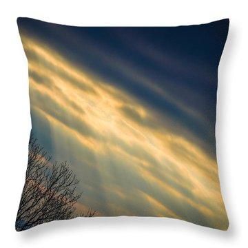 Irish Sunbeams Throw Pillow