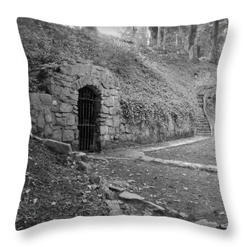 Iron Door In A Garden Throw Pillow