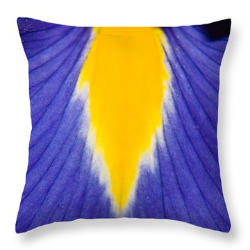 Irresistible Iris Throw Pillow