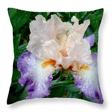 Irresistible Iris Throw Pillow