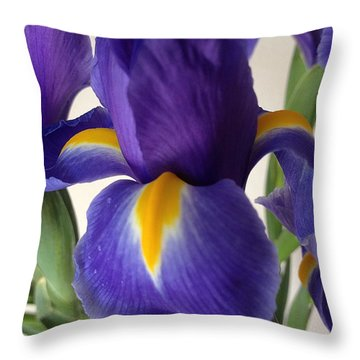 iRus  Throw Pillow