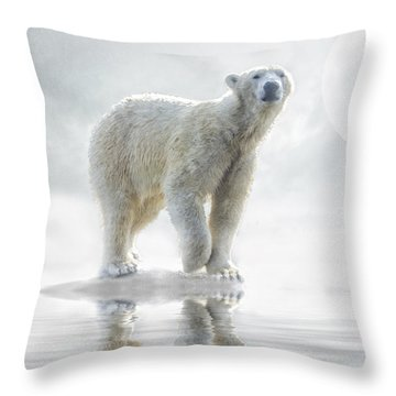 Is Anyone Out There? Throw Pillow by Brian Tarr