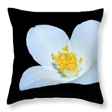 Is As Simple As That Throw Pillow