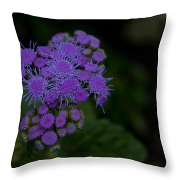 Throw Pillow featuring the photograph Is That Purple by Greg Graham