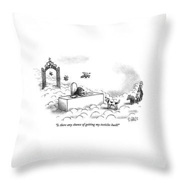 Is There Any Chance Of Getting My Testicles Back? Throw Pillow by Sam Gross