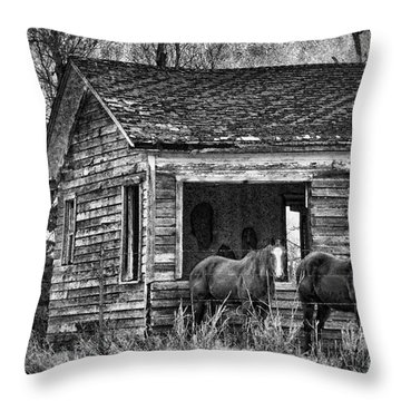 Is This Our Barn Throw Pillow by Betty LaRue