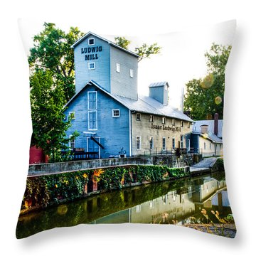 Isaac Ludwig Mill Throw Pillow