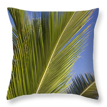 Throw Pillow featuring the photograph Isabel Beach In Puerto Rico Palm Trees Against Blue Sky by Bryan Mullennix