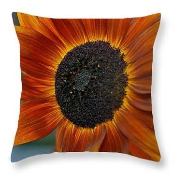 Throw Pillow featuring the photograph Isabella Sun by Joseph Yarbrough