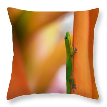 Island Friend Throw Pillow by Mike Reid