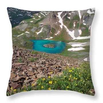 Throw Pillow featuring the photograph Island Lake View by Aaron Spong