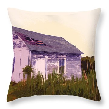 Island Shed Throw Pillow