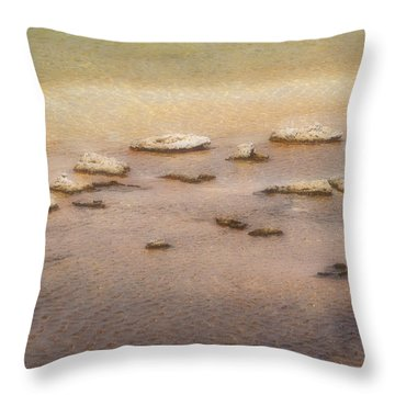 Throw Pillow featuring the photograph Islands In The Stream by Nadalyn Larsen