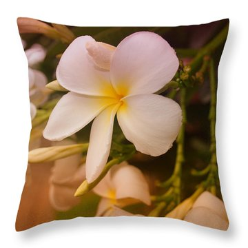 Throw Pillow featuring the photograph Isle De Java by Miguel Winterpacht