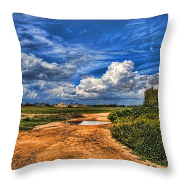 Israel End Of  Spring Season  Throw Pillow