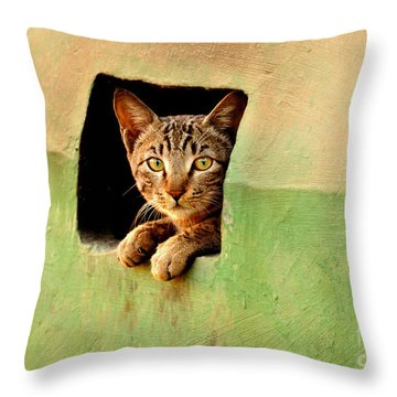 It Is My Home Throw Pillow