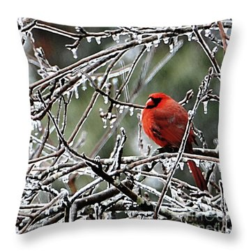 It Is So Cold Throw Pillow