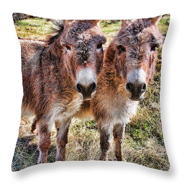 It Is What It Is Throw Pillow by James BO  Insogna