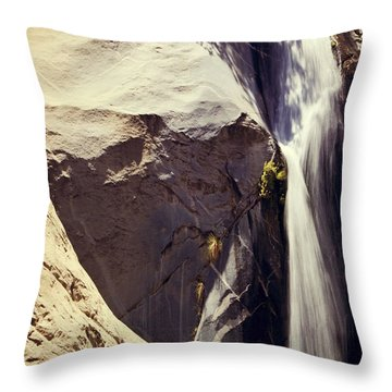 It Pours Down Throw Pillow