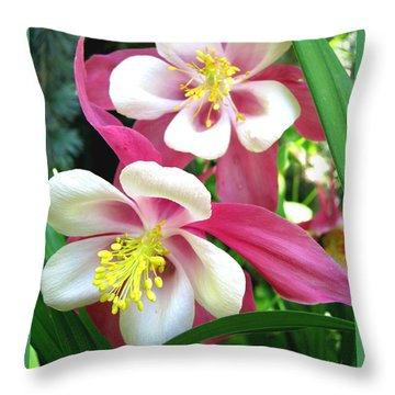 Throw Pillow featuring the photograph It Takes Two by Brooks Garten Hauschild