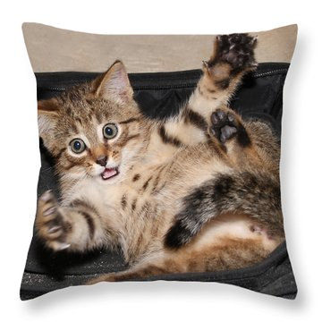 It Was This Big Throw Pillow