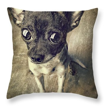 It Wasn't Me Throw Pillow by Billie-Jo Miller