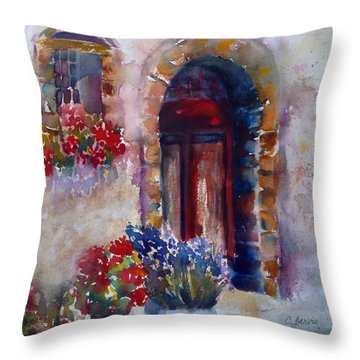 Italian Door Throw Pillow