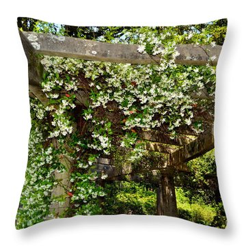Italian Pergola Flowers  Throw Pillow