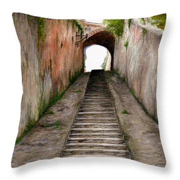 Italian Walkway Steps To A Tunnel Throw Pillow by Nan Wright