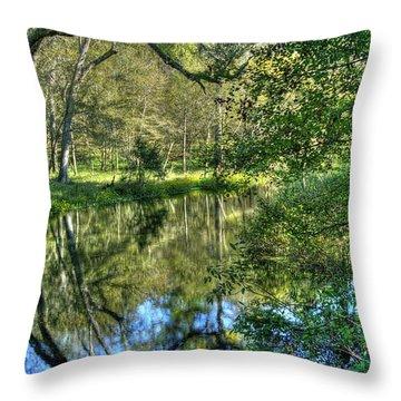 Itchetucknee Springs 03 Throw Pillow