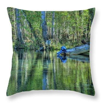 Itchetucknee Springs 04 Throw Pillow