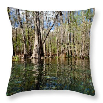Itchetucknee Springs March 2 Throw Pillow