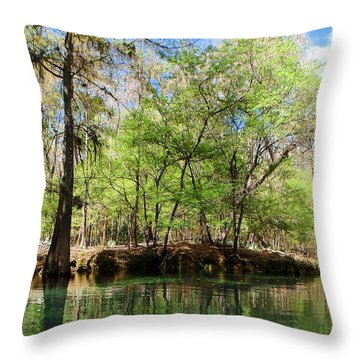 Itchetucknee Springs March 3 Throw Pillow