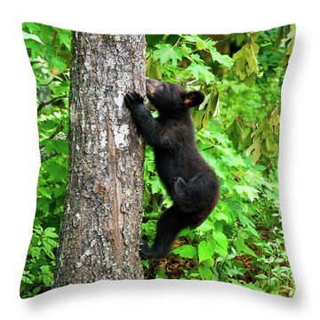 Itchy Baby Throw Pillow by Christi Kraft