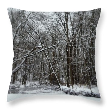 Its A Beautiful Winter Throw Pillow by Kay Novy