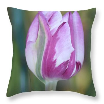 Throw Pillow featuring the photograph It's A Gift To Be Simple by Mary Lou Chmura