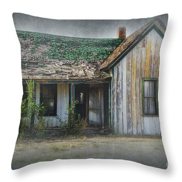 It's  A Long Story Throw Pillow by Sandra Bronstein