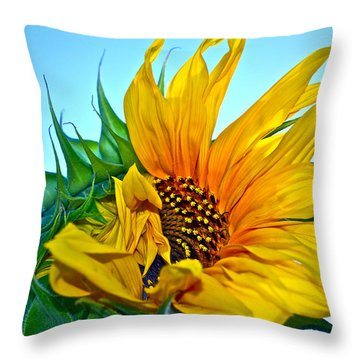 Its A New Dawn Throw Pillow by Gwyn Newcombe